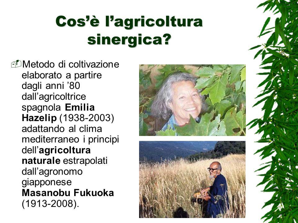 Cos'è l'agricoltura sinergica