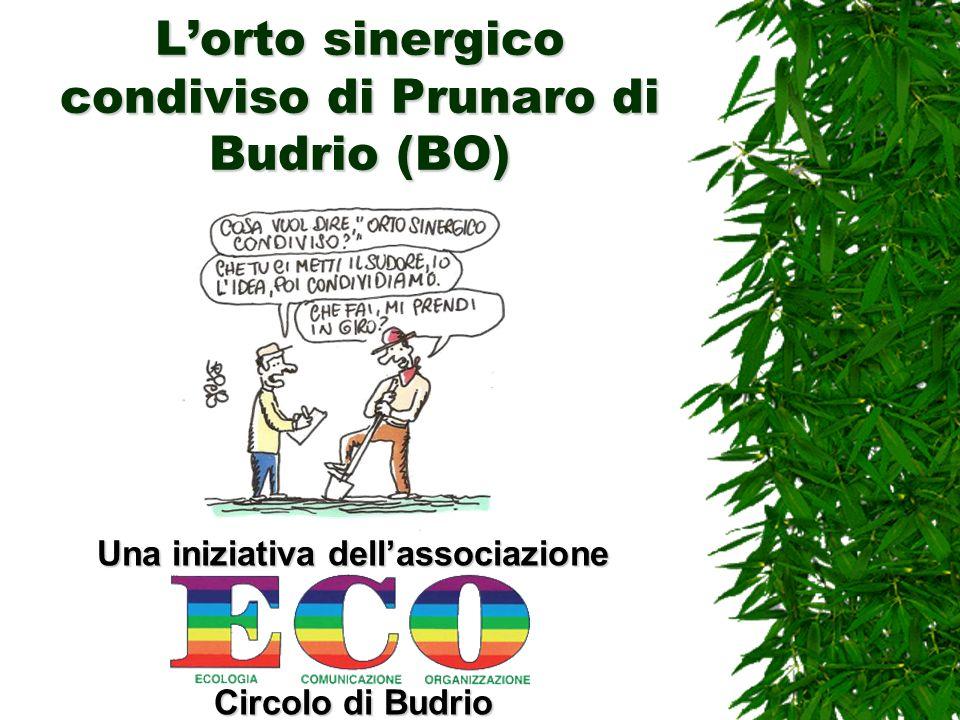 L'orto sinergico condiviso di Prunaro di Budrio (BO)