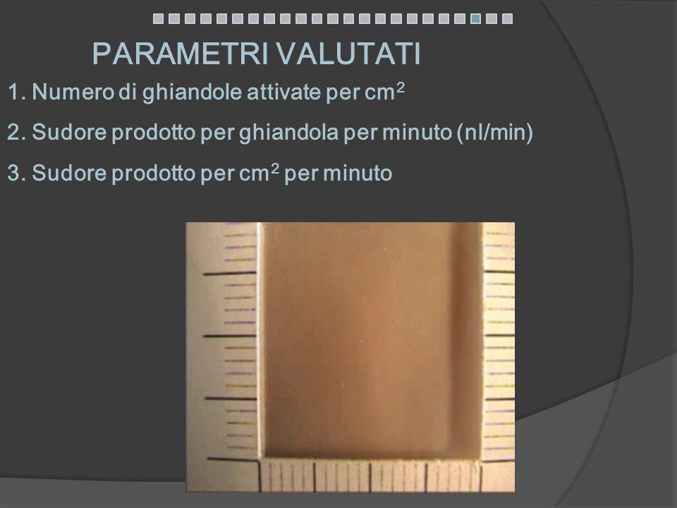 PARAMETRI VALUTATI 1. Numero di ghiandole attivate per cm2