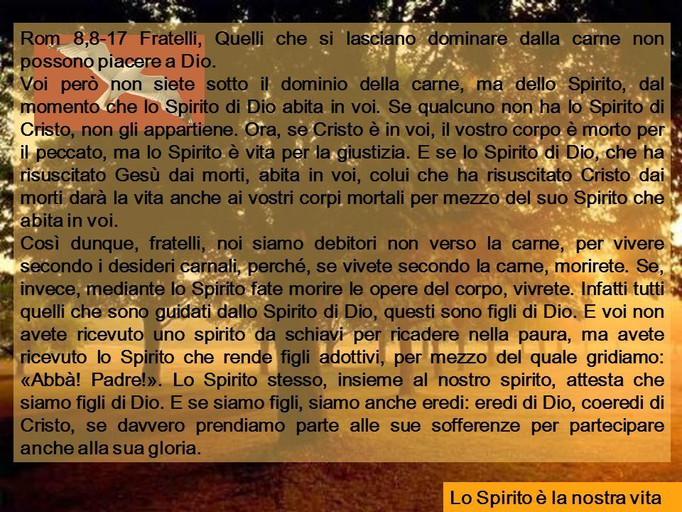 Rom 8,8-17 Fratelli, Quelli che si lasciano dominare dalla carne non possono piacere a Dio.