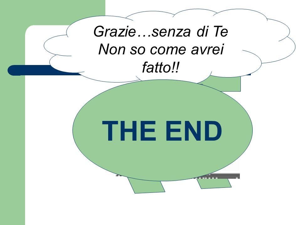 THE END Grazie…senza di Te Non so come avrei fatto!! Hei..magnifico..