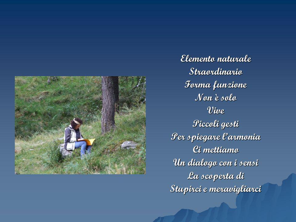 Per spiegare l'armonia Ci mettiamo Un dialogo con i sensi