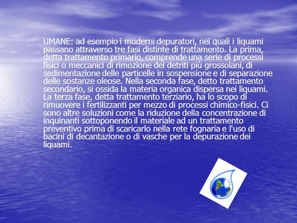 UMANE: ad esempio i moderni depuratori, nei quali i liquami passano attraverso tre fasi distinte di trattamento.
