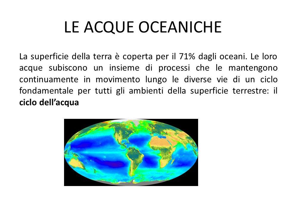 LE ACQUE OCEANICHE