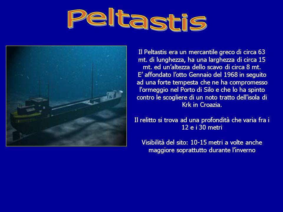 Il relitto si trova ad una profondità che varia fra i 12 e i 30 metri