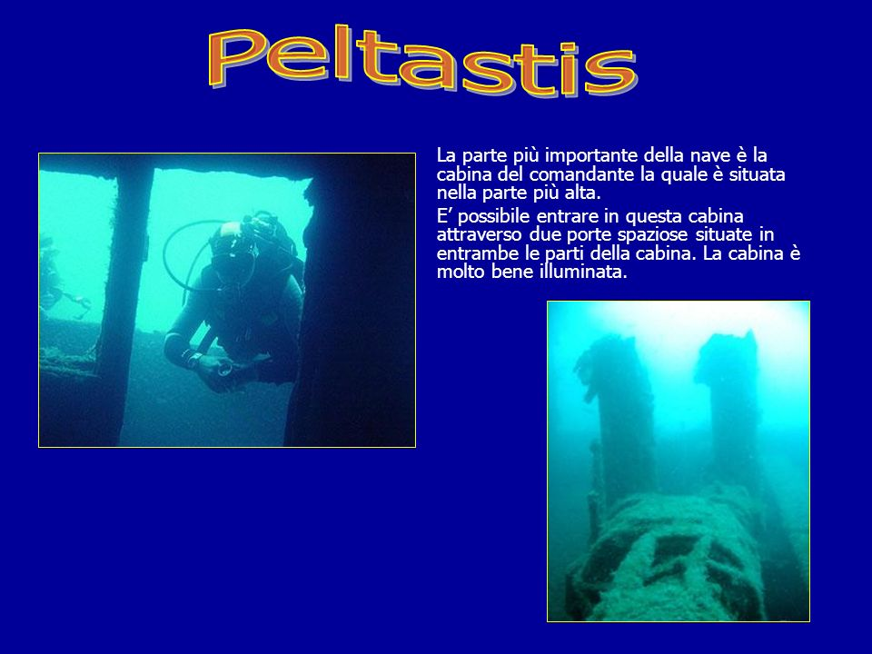 Peltastis La parte più importante della nave è la cabina del comandante la quale è situata nella parte più alta.