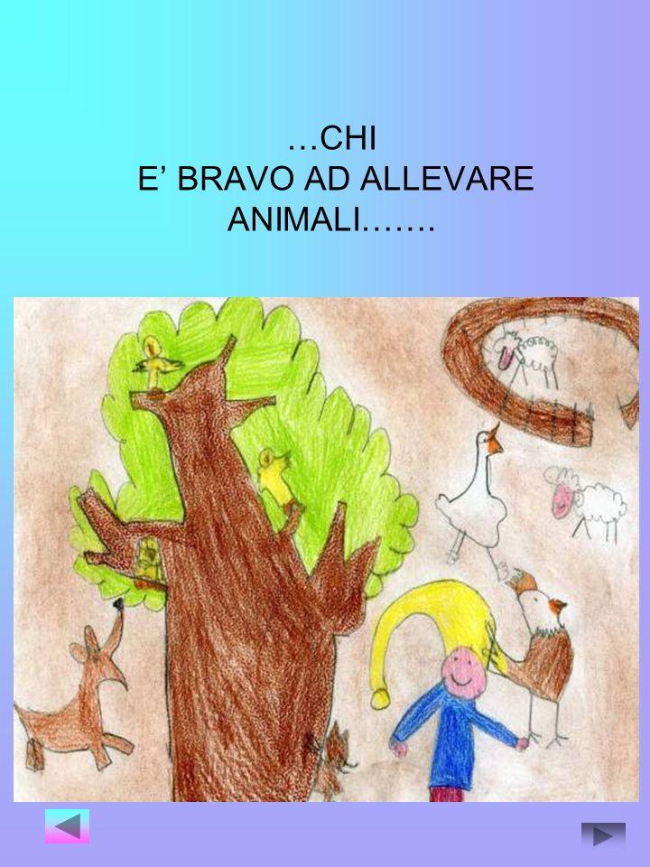 …CHI E' BRAVO AD ALLEVARE ANIMALI…….