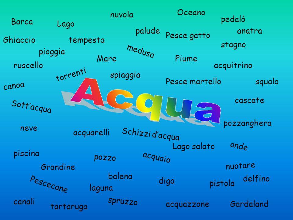 Acqua Oceano nuvola pedalò Barca Lago palude anatra Pesce gatto