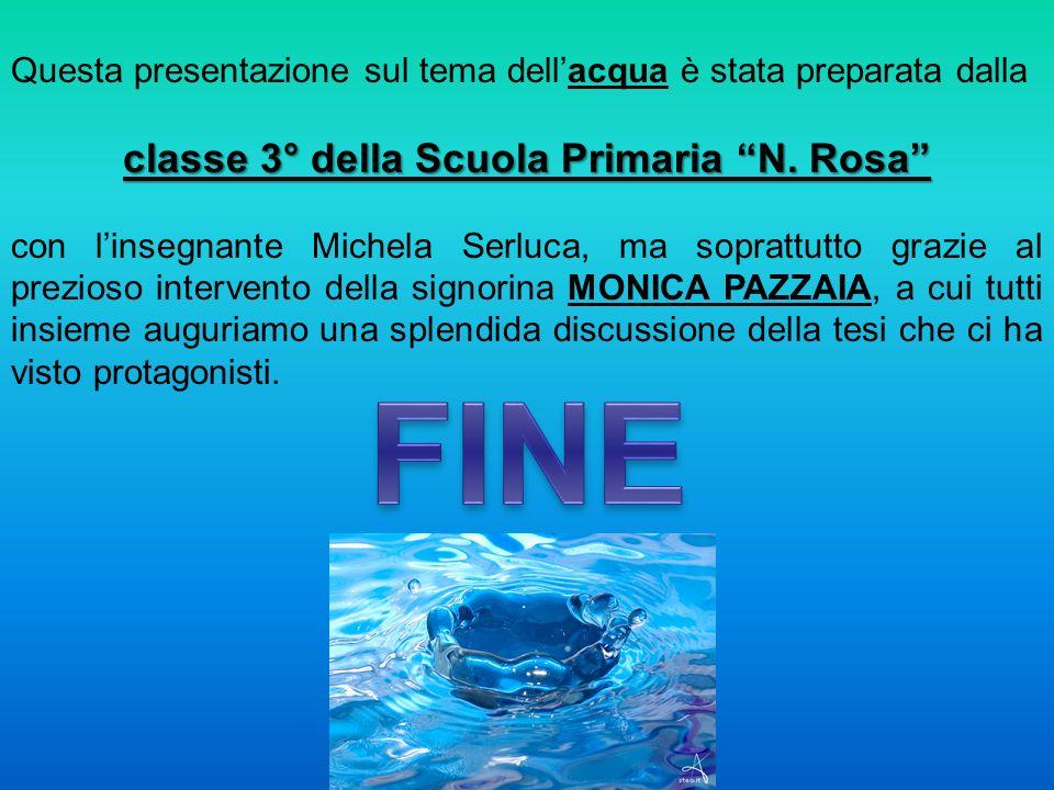 classe 3° della Scuola Primaria N. Rosa