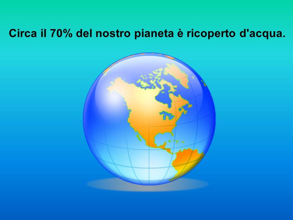 Circa il 70% del nostro pianeta è ricoperto d acqua.
