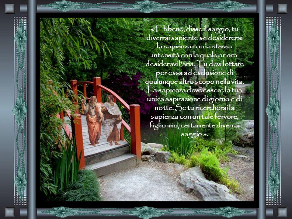 « Ebbene, disse il saggio, tu diverrai sapiente se desidererai la sapienza con la stessa intensità con la quale or ora