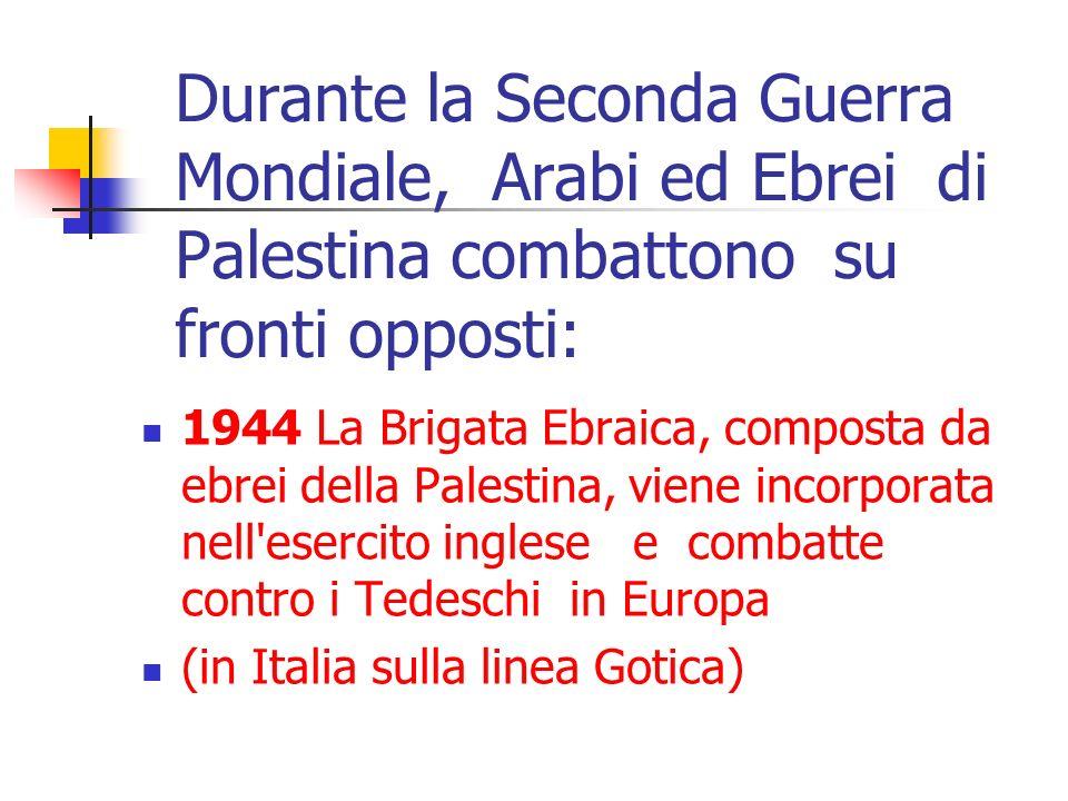 Durante la Seconda Guerra Mondiale, Arabi ed Ebrei di Palestina combattono su fronti opposti: