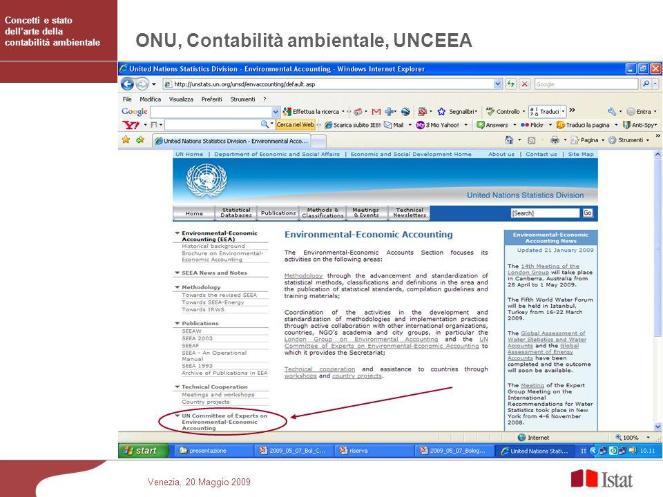 ONU, Contabilità ambientale, UNCEEA