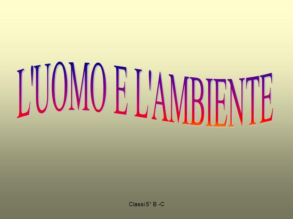 L UOMO E L AMBIENTE Classi 5° B -C