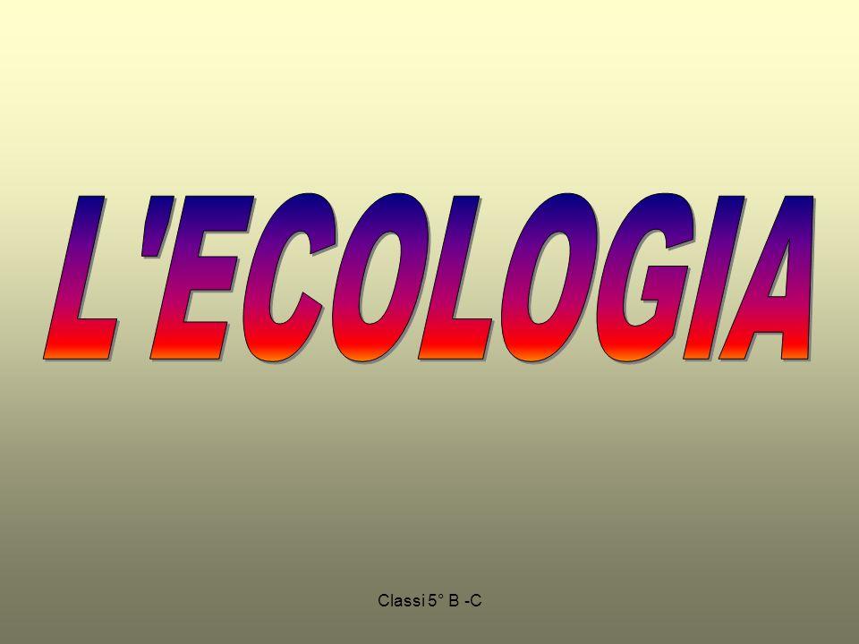 L ECOLOGIA Classi 5° B -C