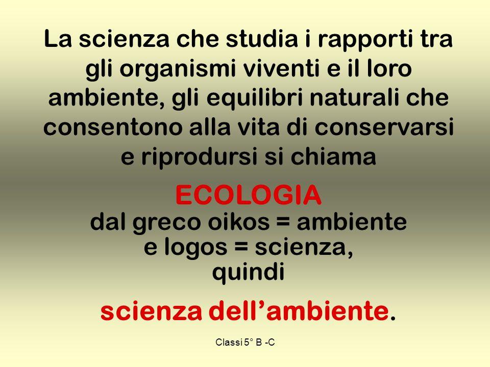 ECOLOGIA dal greco oikos = ambiente e logos = scienza, quindi