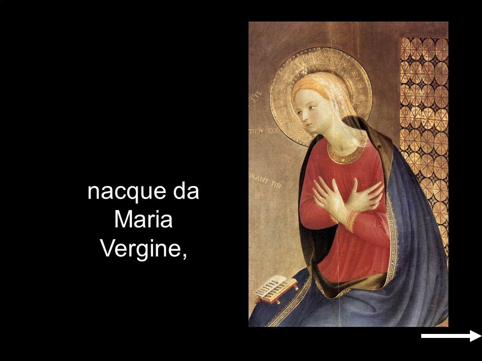 nacque da Maria Vergine,