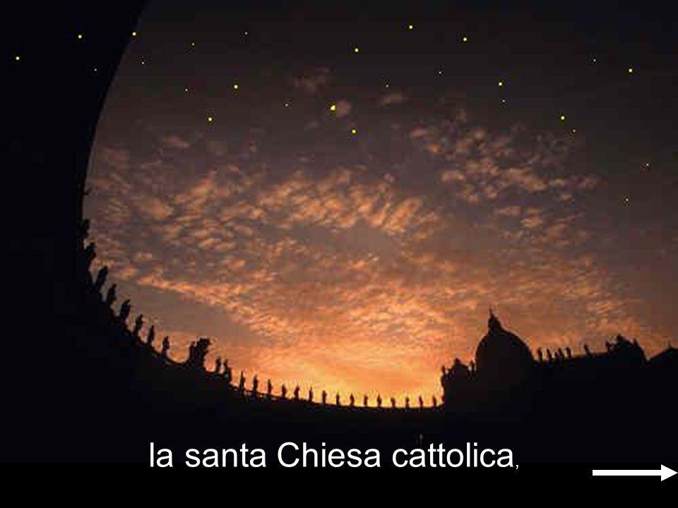 la santa Chiesa cattolica,