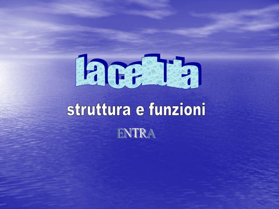 La cellula struttura e funzioni ENTRA