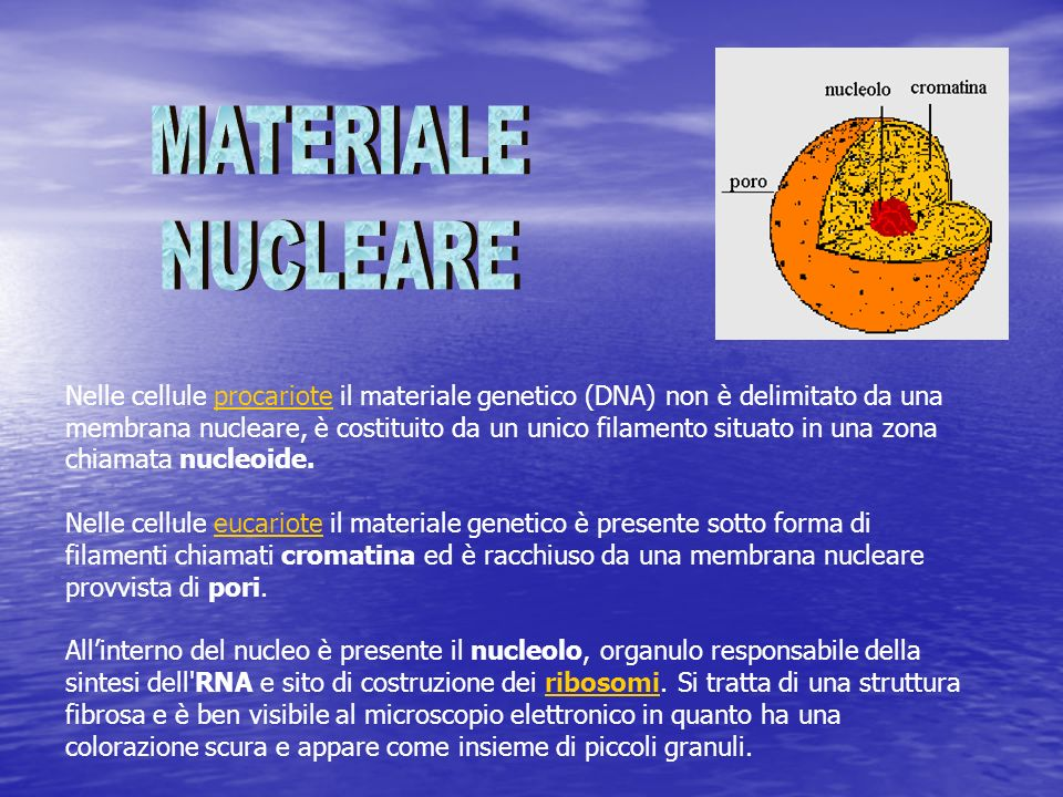 MATERIALE NUCLEARE.