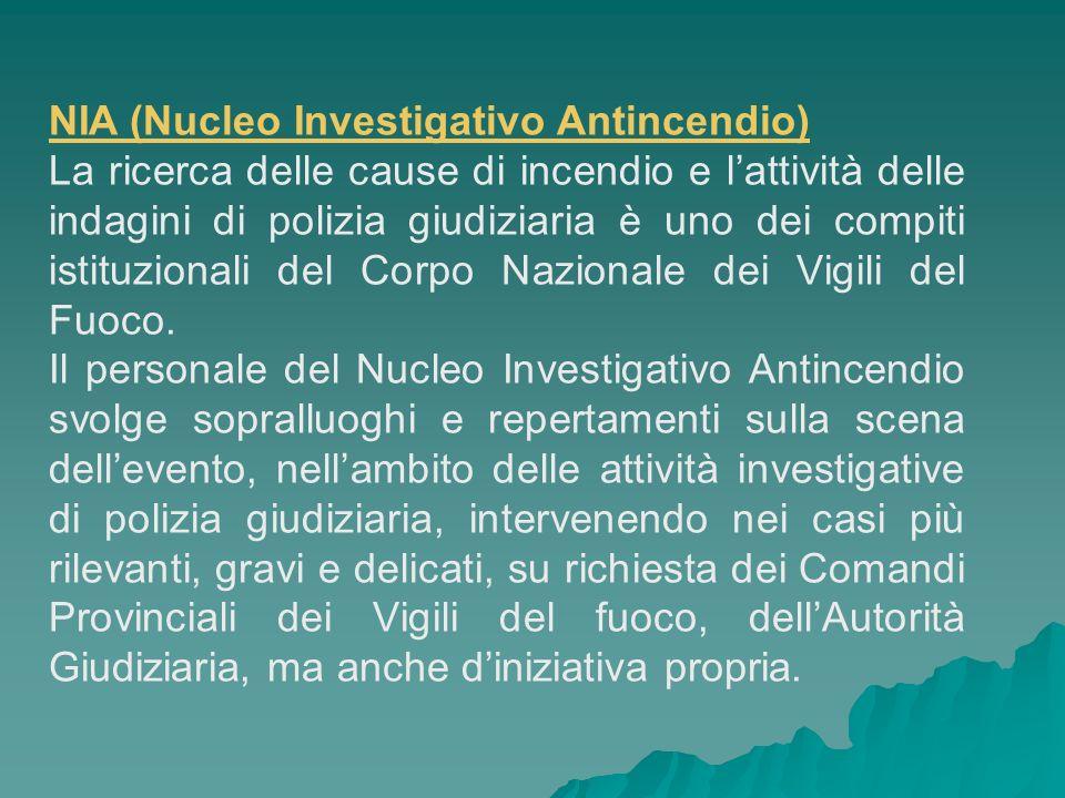 NIA (Nucleo Investigativo Antincendio)