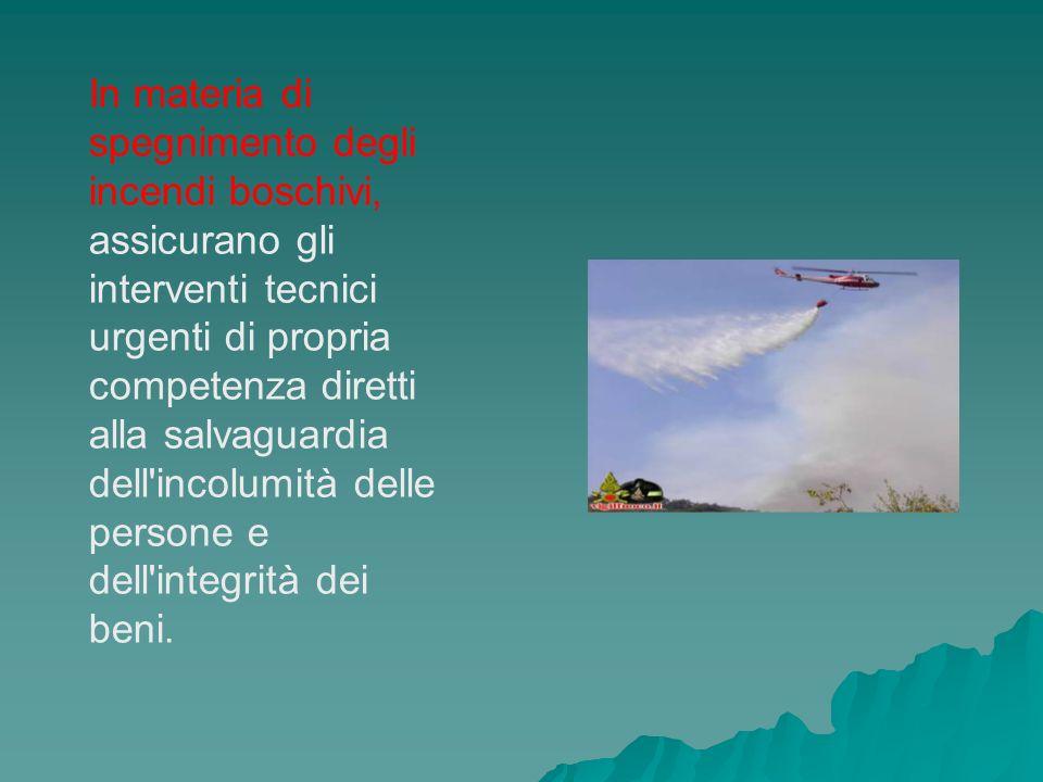 In materia di spegnimento degli incendi boschivi, assicurano gli interventi tecnici urgenti di propria competenza diretti alla salvaguardia dell incolumità delle persone e dell integrità dei beni.