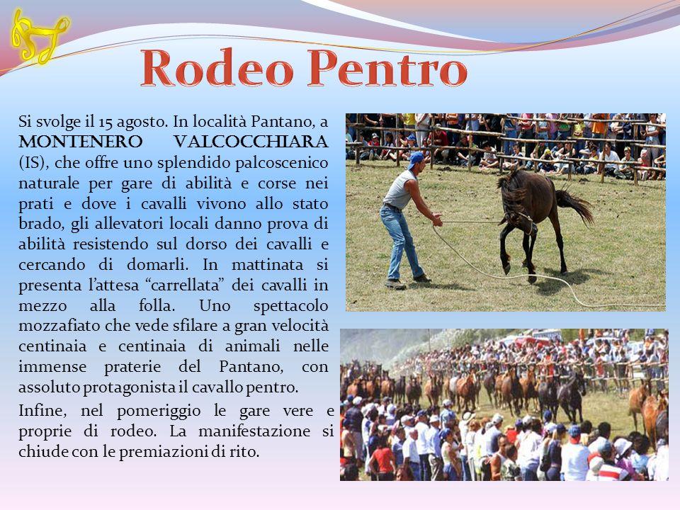 R Rodeo Pentro.