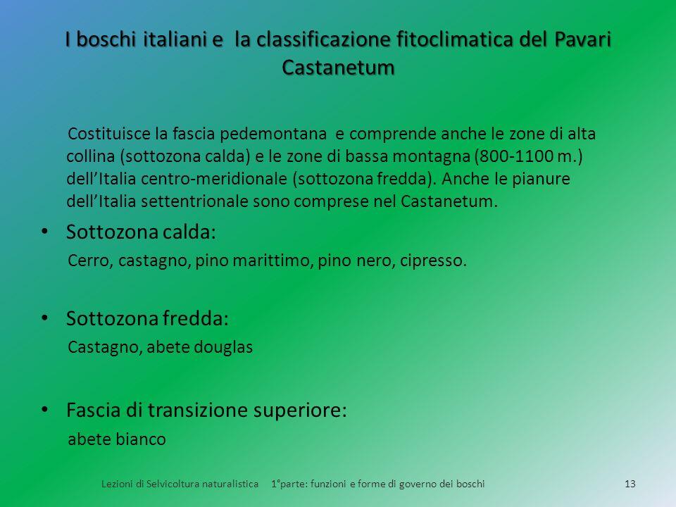 I boschi italiani e la classificazione fitoclimatica del Pavari Castanetum