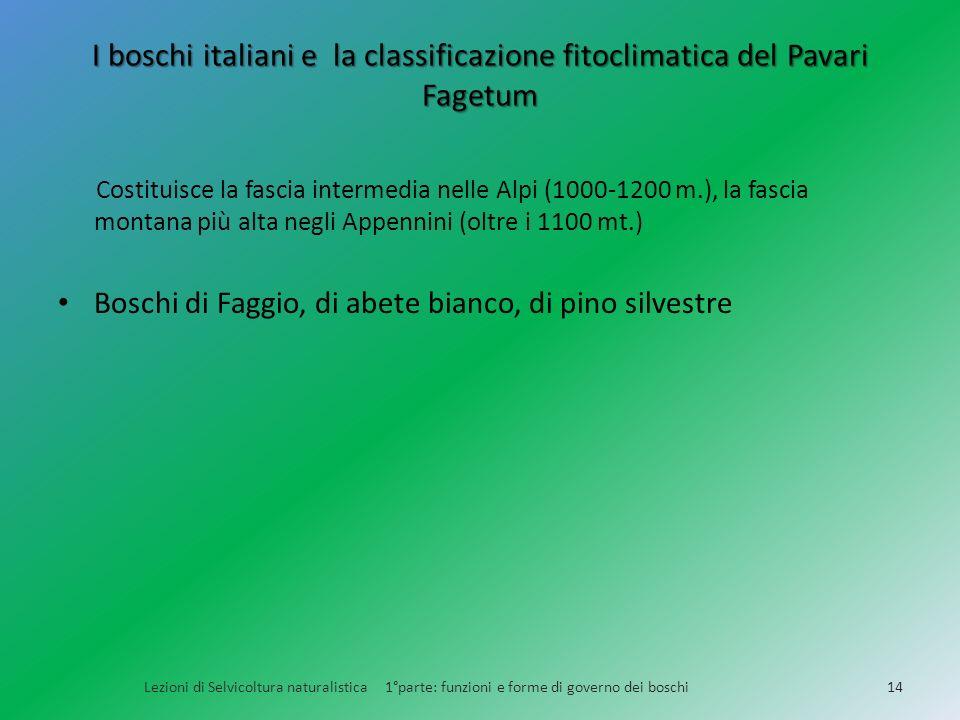 I boschi italiani e la classificazione fitoclimatica del Pavari Fagetum