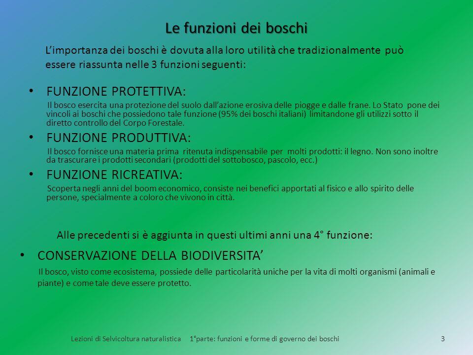 Le funzioni dei boschi FUNZIONE PROTETTIVA: FUNZIONE PRODUTTIVA: