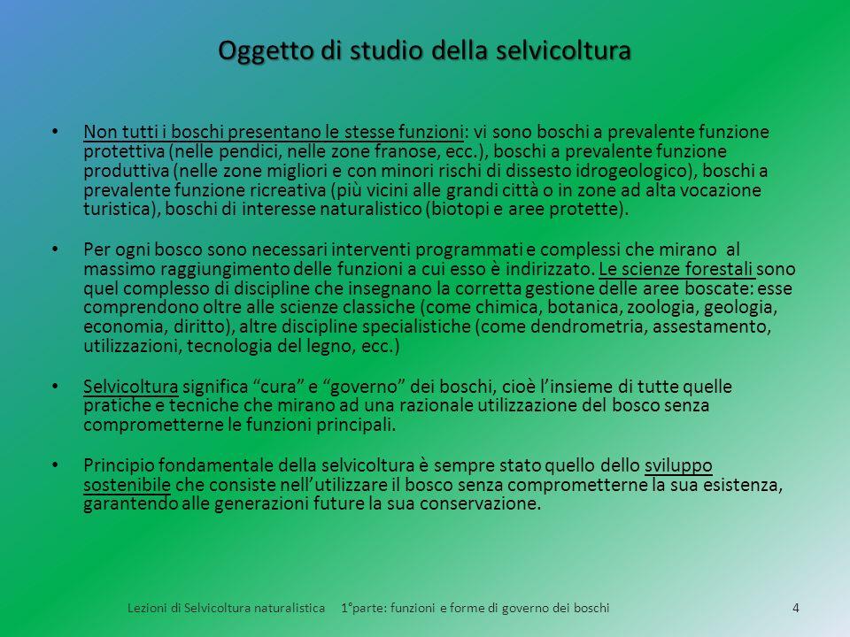 Oggetto di studio della selvicoltura