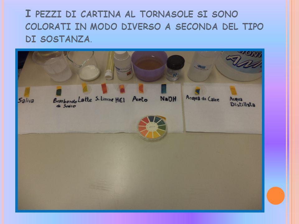I pezzi di cartina al tornasole si sono colorati in modo diverso a seconda del tipo di sostanza.
