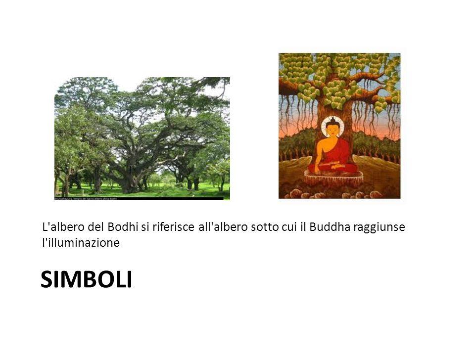 L albero del Bodhi si riferisce all albero sotto cui il Buddha raggiunse l illuminazione