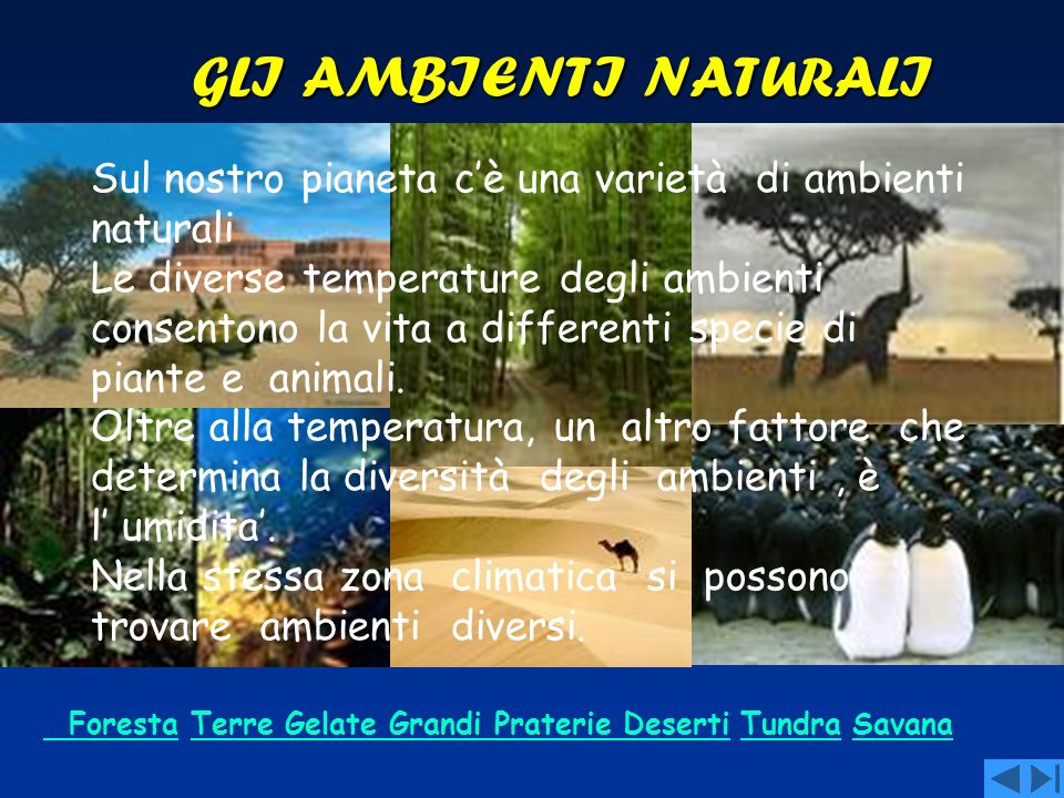 GLI AMBIENTI NATURALISul nostro pianeta c'è una varietà di ambienti naturali.