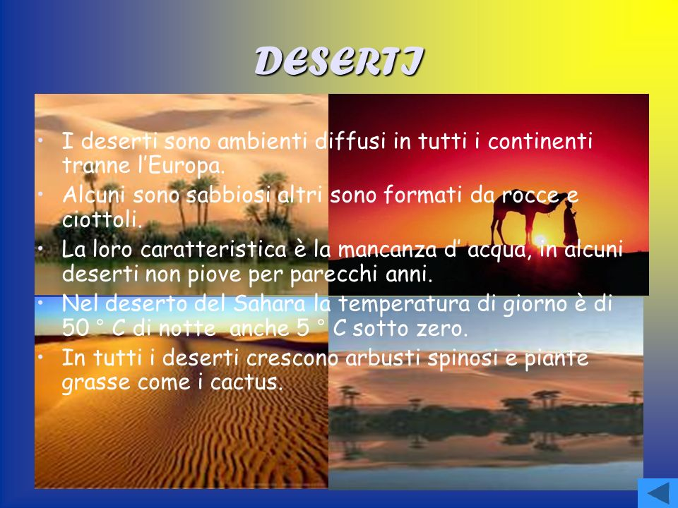 DESERTI I deserti sono ambienti diffusi in tutti i continenti tranne l'Europa. Alcuni sono sabbiosi altri sono formati da rocce e ciottoli.
