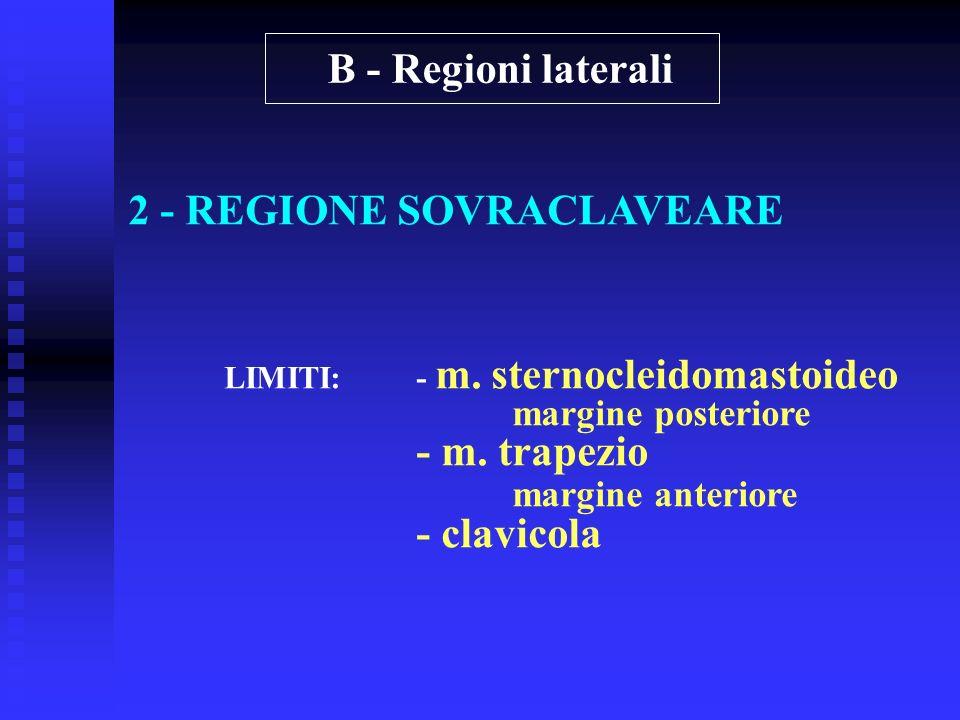 2 - REGIONE SOVRACLAVEARE