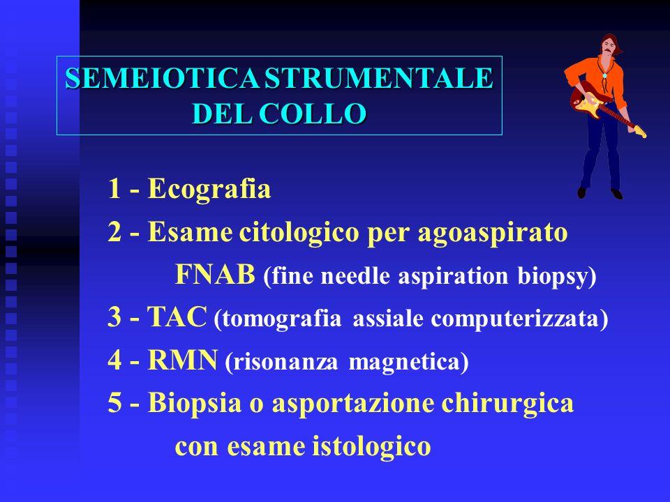 SEMEIOTICA STRUMENTALE