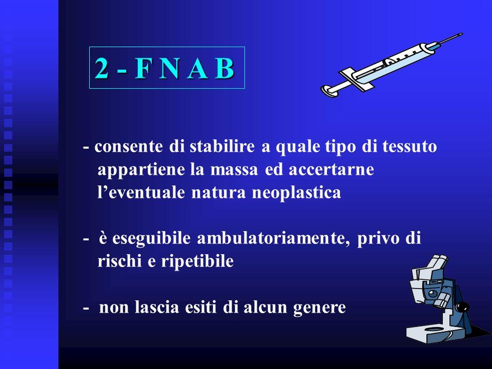 2 - F N A B - consente di stabilire a quale tipo di tessuto