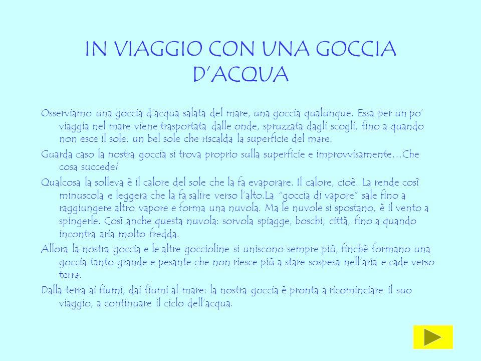 IN VIAGGIO CON UNA GOCCIA D'ACQUA