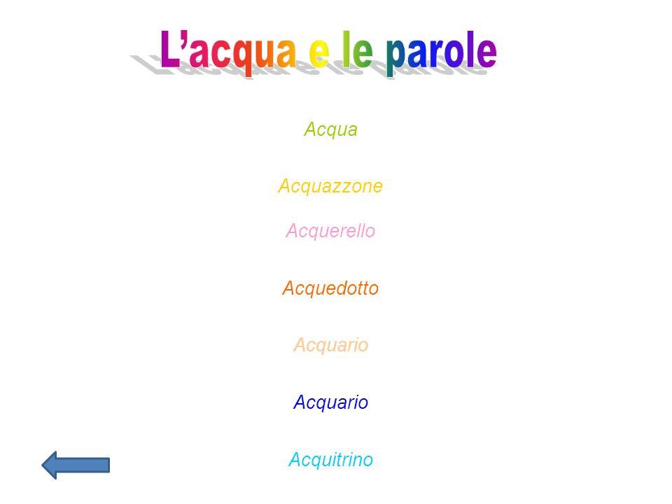 L'acqua e le parole Acqua Acquazzone Acquerello Acquedotto Acquario