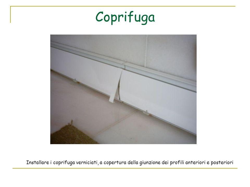 Coprifuga Installare i coprifuga verniciati, a copertura della giunzione dei profili anteriori e posteriori.