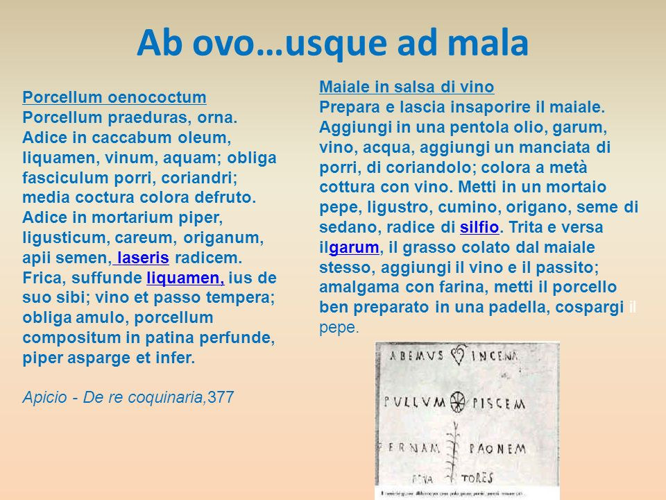 Ab ovo…usque ad mala Maiale in salsa di vino Porcellum oenococtum