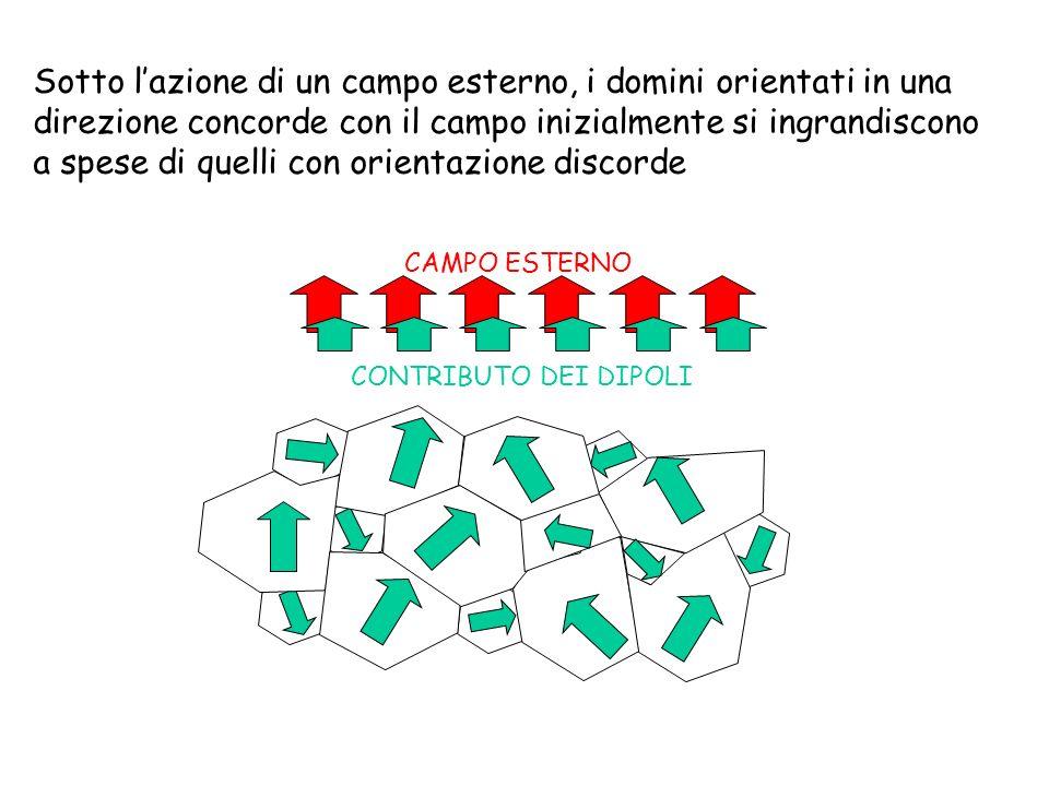 Sotto l'azione di un campo esterno, i domini orientati in una direzione concorde con il campo inizialmente si ingrandiscono a spese di quelli con orientazione discorde
