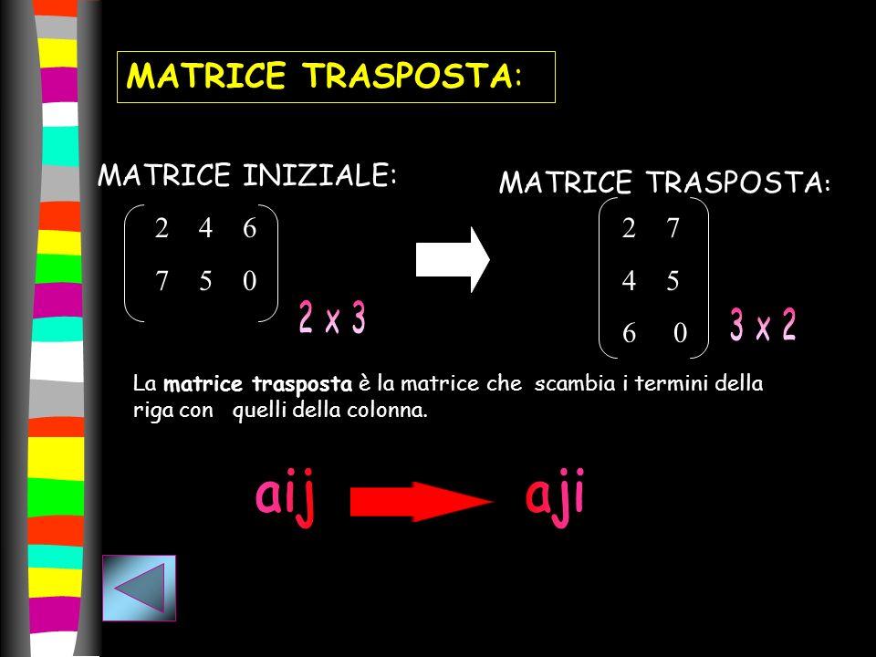 aij aji MATRICE TRASPOSTA: MATRICE INIZIALE: MATRICE TRASPOSTA: 4 6