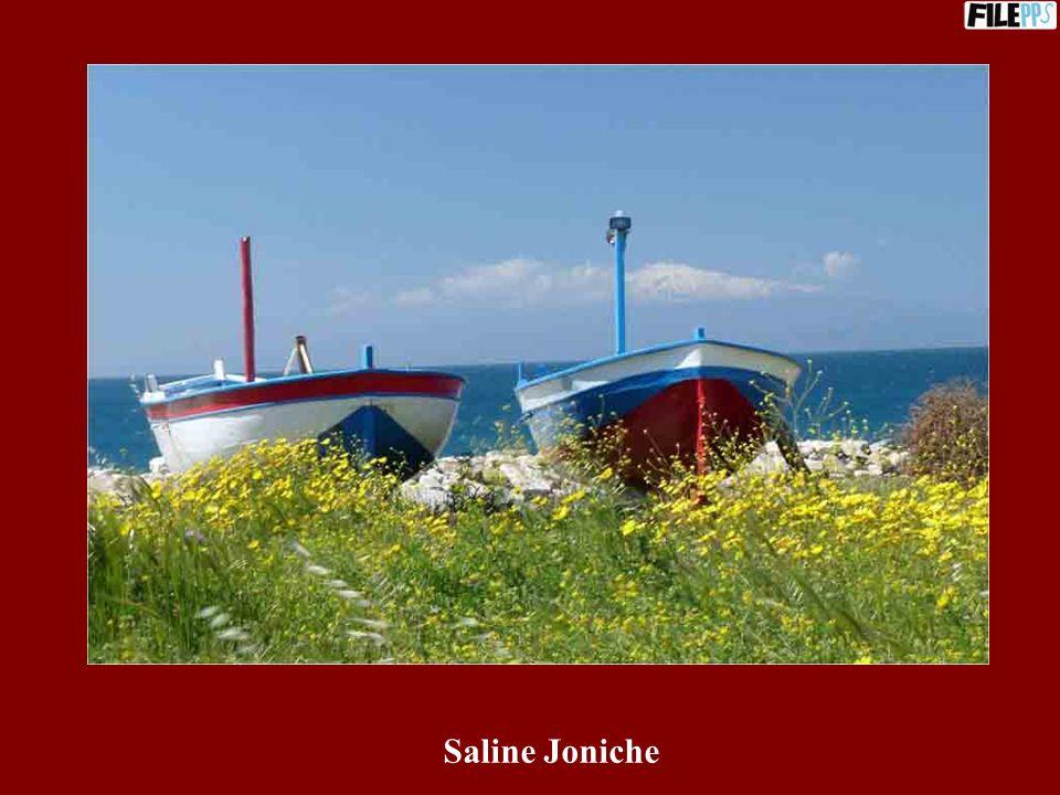 Saline Joniche