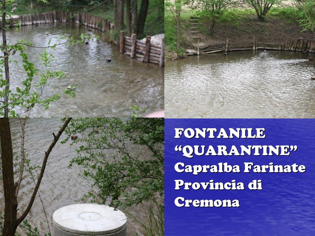 FONTANILE QUARANTINE Capralba Farinate Provincia di Cremona