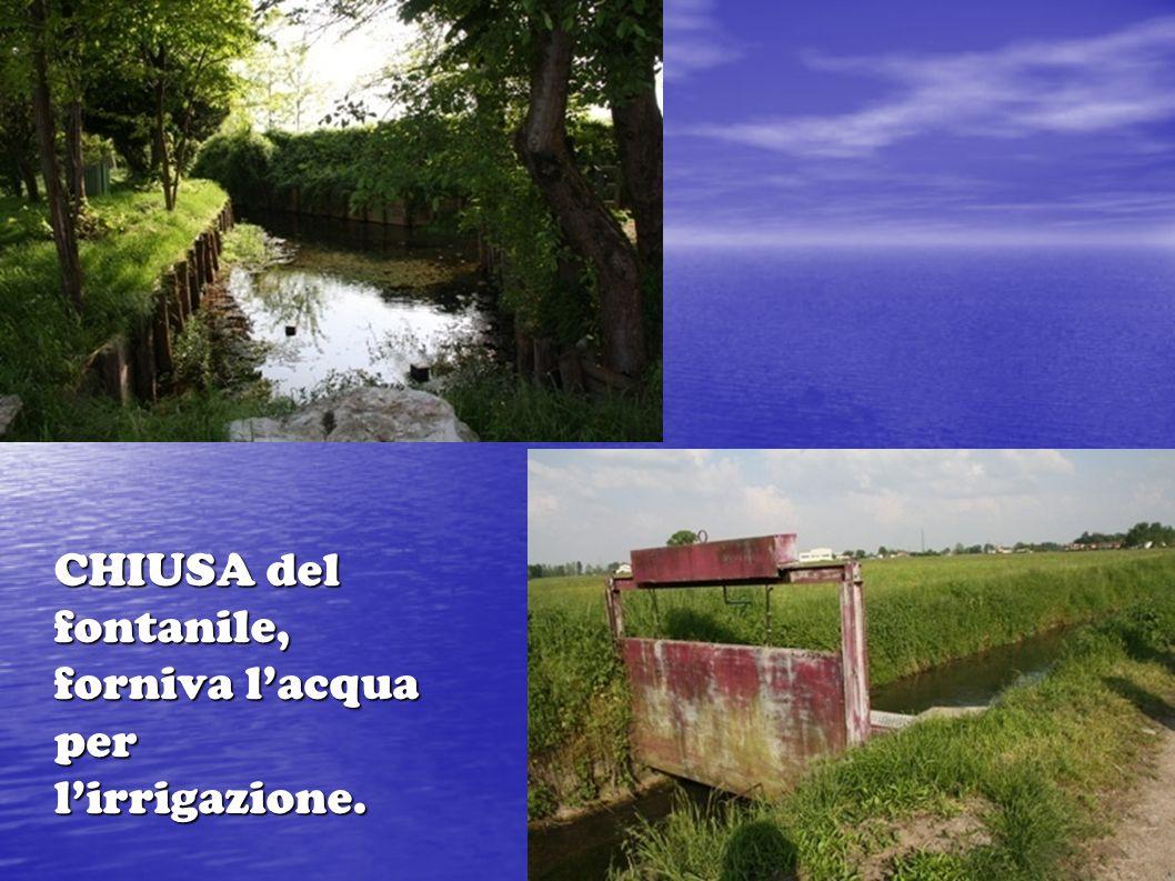 CHIUSA del fontanile, forniva l'acqua per l'irrigazione.