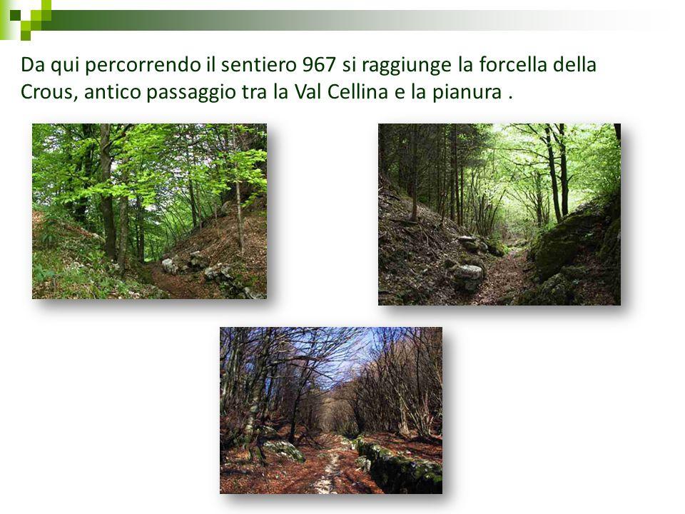 Da qui percorrendo il sentiero 967 si raggiunge la forcella della Crous, antico passaggio tra la Val Cellina e la pianura .