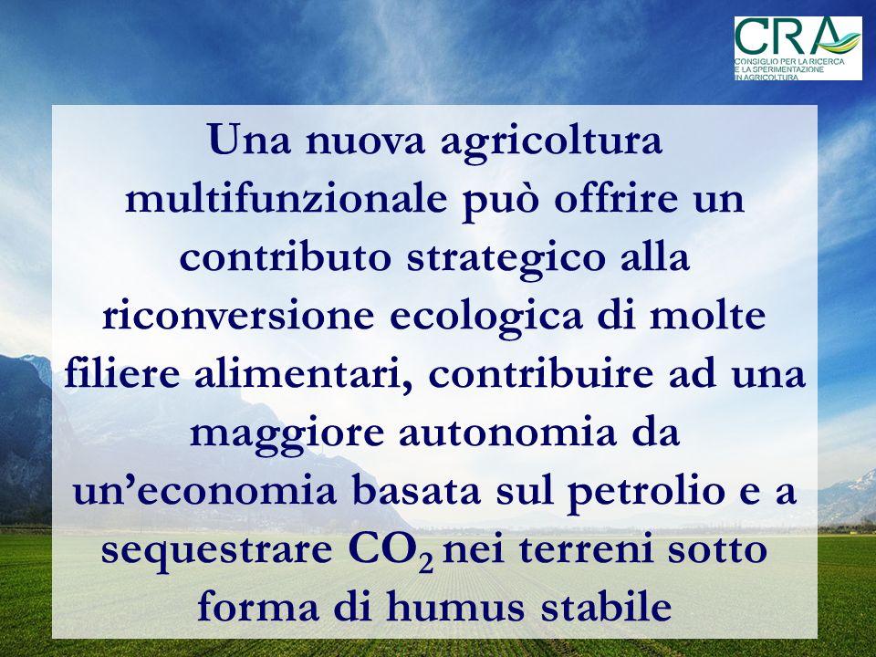 Una nuova agricoltura multifunzionale può offrire un contributo strategico alla riconversione ecologica di molte filiere alimentari, contribuire ad una maggiore autonomia da un'economia basata sul petrolio e a sequestrare CO2 nei terreni sotto forma di humus stabile