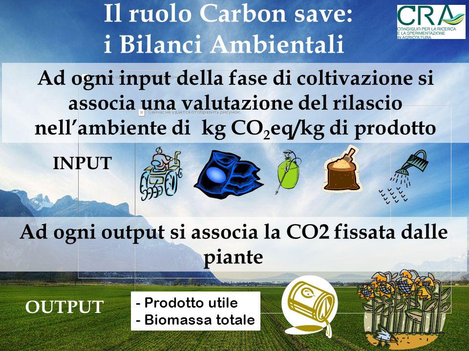 Ad ogni output si associa la CO2 fissata dalle piante